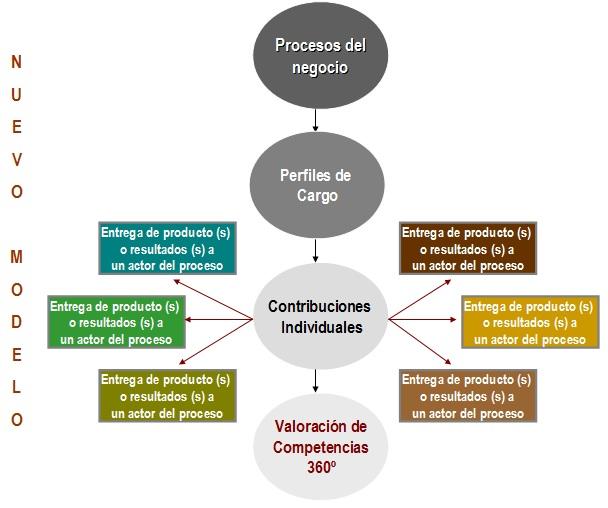CCO Los Consultores